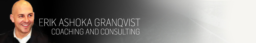 Erik Ashoka Granqvist – Coaching & Consulting